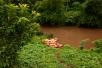 Die Kayaks