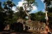 "Der ""Tomb Raider"" Tempel Ta Prohm"