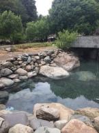 """Ein Nachmittag im natürlichen Thermalbad """"Los Pozones"""""""