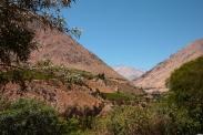 Das Elqui-Tal