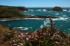 Blick auf Chiloés Küste