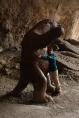 """Nachbildung des bereits ausgestorbenen Riesenfaultiers """"Mylodon"""""""